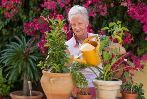 home care packages sunshine coast - aged care providers qld - gardening activities